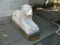 Статуя льва. Ливадийский дворец (Крым).