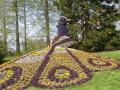 Павлин из цветов
