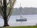 Парус. Баденское озеро