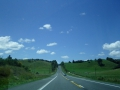 Луга и равнины Новой Зеландии