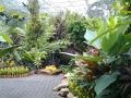 Растительные композиции парка Нонг Нуч