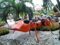 Оранжевый Муравей