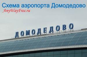 schema-aeroporta-domodedovo
